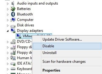 disable display adapter